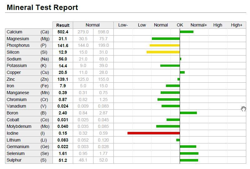 Oligoscan analyse rapport